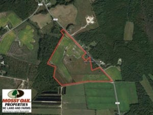UNDER CONTRACT!  58 Acres of Farm and Timber Land For Sale in Columbus County NC!