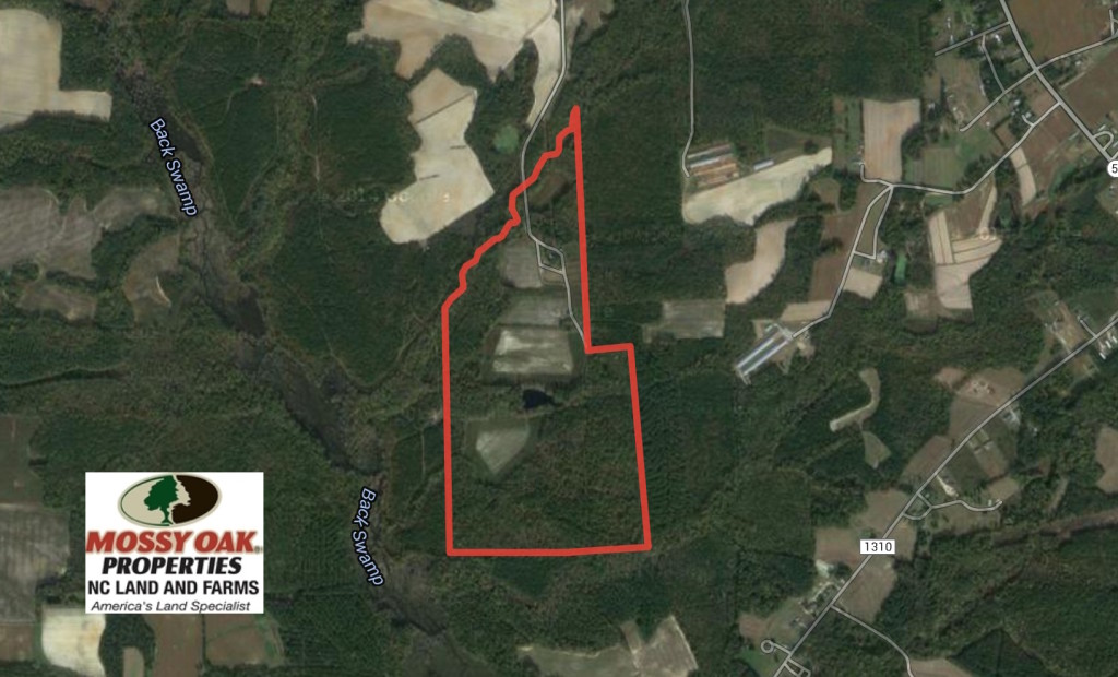 SOLD!  120 Acres of Hunting Land For Sale in Nash County NC!