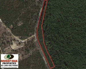 UNDER CONTRACT!  6 Acres of Timber Land For Sale in Bladen County NC!
