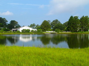 SOLD!  63 Acres of Waterfront Hunting Land For Sale in Accomack County VA!