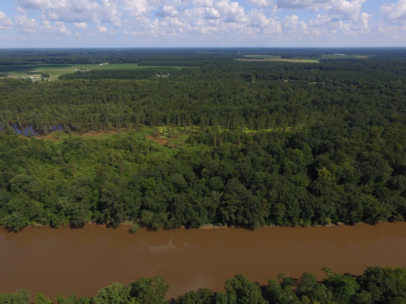 SOLD!  35 Acres of Recreational and Hunting Land For Sale in Lenoir County NC!