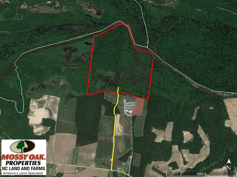 SOLD!  172 Acres of Riverfront Hunting and Timber Land For Sale in Craven County NC!