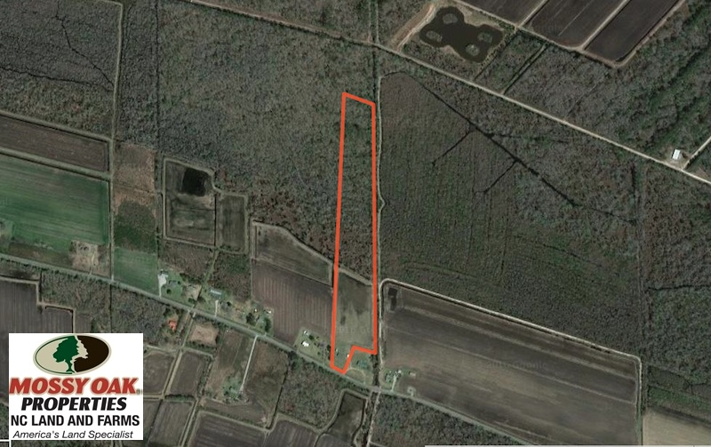 SOLD!  19.21 Acres of Hunting Land with Duck Impoundment For Sale in Hyde County NC!