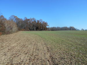 SOLD!  23.75 Acres of Residential Farm Land For Sale in Westmoreland County VA!