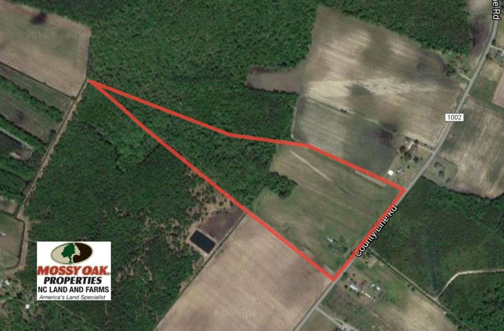 SOLD!  31 acres of Farm and Timber Land in Chowan County NC!