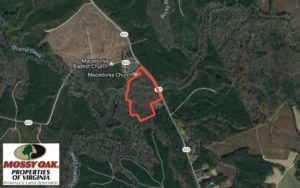 UNDER CONTRACT!  20.5 Acres of Residential and Hunting Land For Sale in Greensville County VA!
