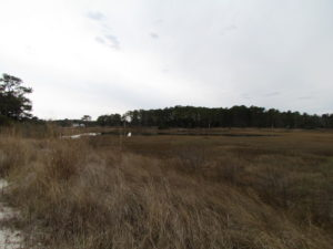UNDER CONTRACT!  18  Acres of Waterfront Property For Sale in Mathews County Virginia!