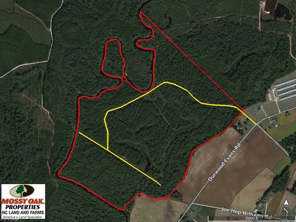 SOLD!  212 Acre Riverfront Hunting Land for Sale in Duplin County NC!