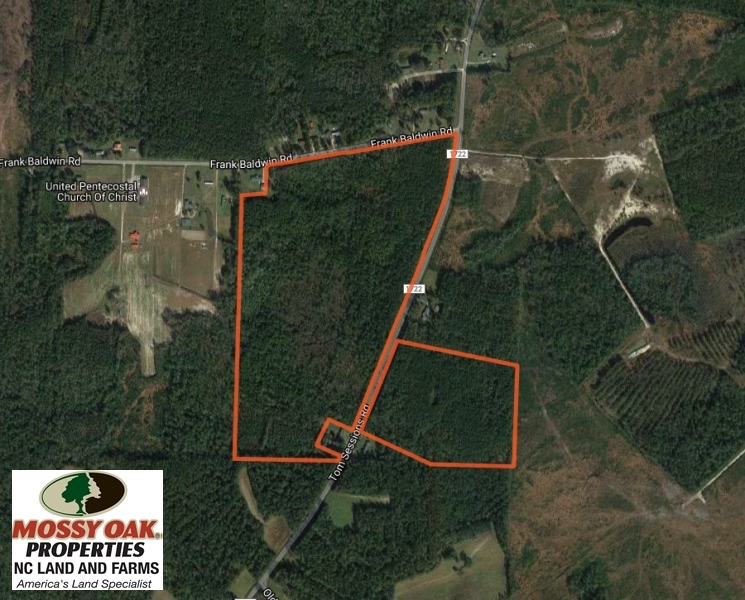 SOLD!  90 Acres of Timber and Hunting Land For Sale in Columbus County NC!