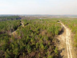 UNDER CONTRACT!  22.65 Acres of Recreational Land For Sale in Nottoway County VA!