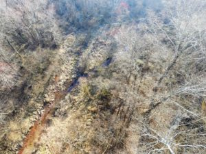 SOLD!  43 Acres of Recreational Land For Sale in Nottoway County VA!