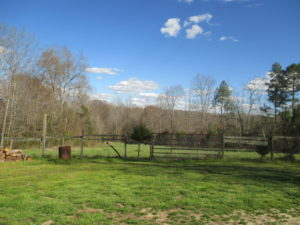 UNDER CONTRACT!  8 Aces of Residential Farm Land For Sale in Mecklenburg County VA!