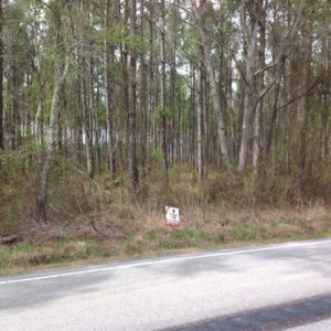 SOLD!  5 Acres of Residential Land For Sale in Surry County VA!