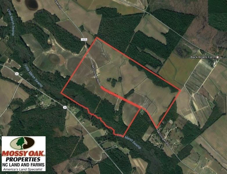 SOLD!  380 Acres of Farm and Timber Land For Sale in Robeson and Hoke Counties!
