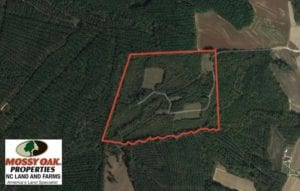 SOLD!  60 Acres of Farm and Timber Land For Sale in Halifax County NC!