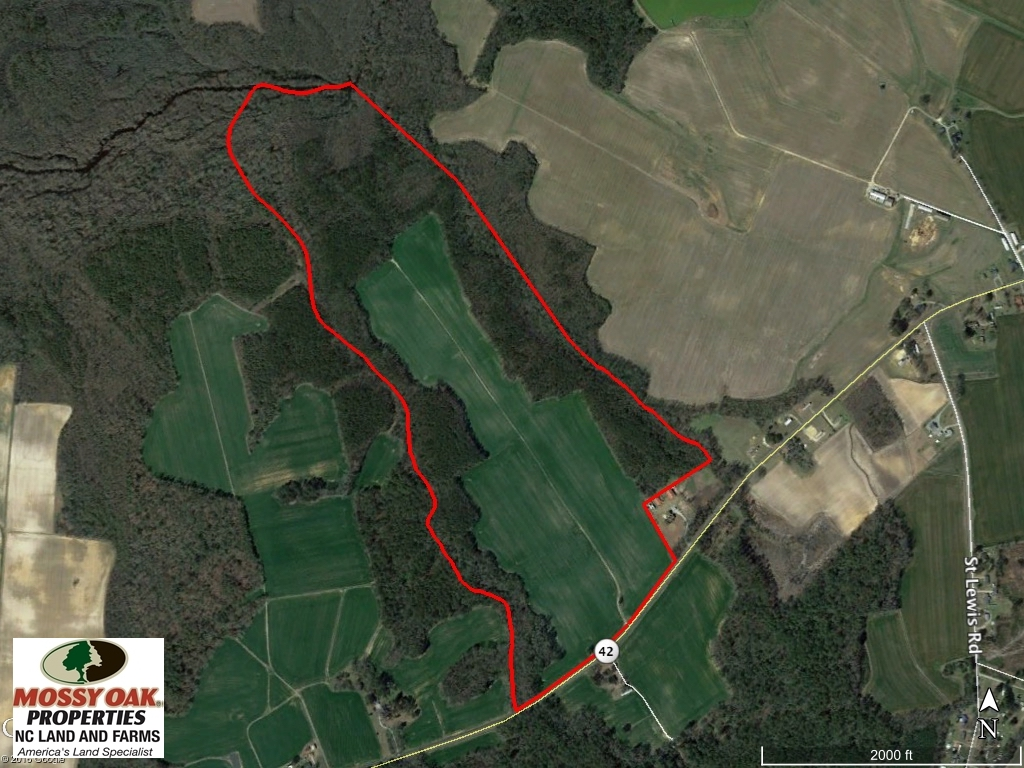 SOLD!  181 Acres of Farm and Timberland for Sale in Edgecombe County NC!