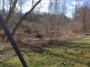 UNDER CONTRACT!  174 Acres of Hunting Land For Sale in Pittsylvania County VA!