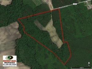 SOLD!  75.5 Acres of Farm and Timberland for Sale in Jones County NC!