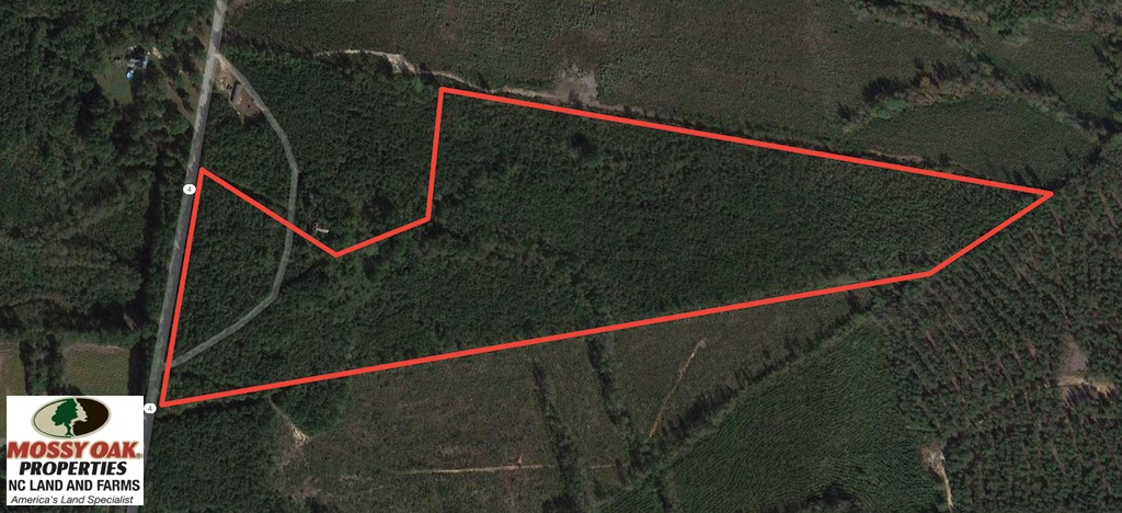 SOLD!  48.2 Acres of Timber Land For Sale in Halifax County NC!