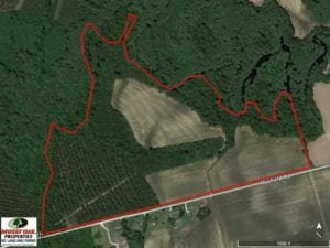 SOLD!  78.5 Acres of Farm and Timber Land for Sale in Jones County NC!