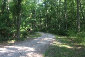 UNDER CONTRACT!  29 Acres of Residential Land For Sale in Chesapeake VA!