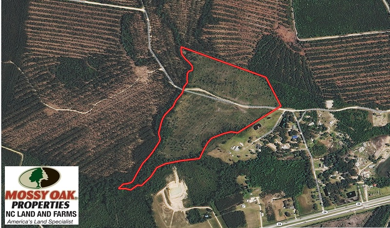SOLD!  33 Acres of Hunting and Timber Land for Sale in Duplin County NC!