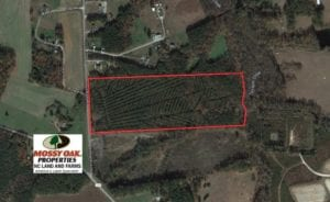 UNDER CONTRACT!  30 Acres of Hunting and Timber Land For Sale in Warren County NC!