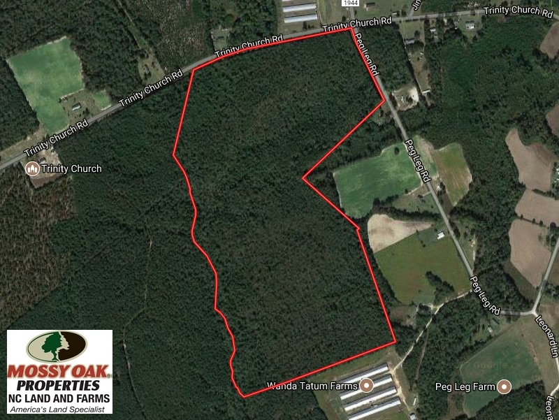 SOLD!  101 Acres of Timber Land For Sale in Sampson County NC!