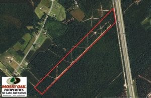 SOLD!  28 Acres of Hunting Land For Sale in Pender County NC!