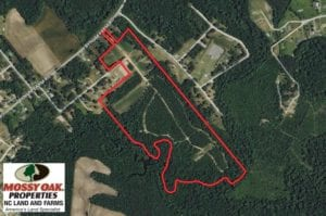 SOLD!  49 Acres of Hunting and Timber Land For Sale in Edgecombe County NC!