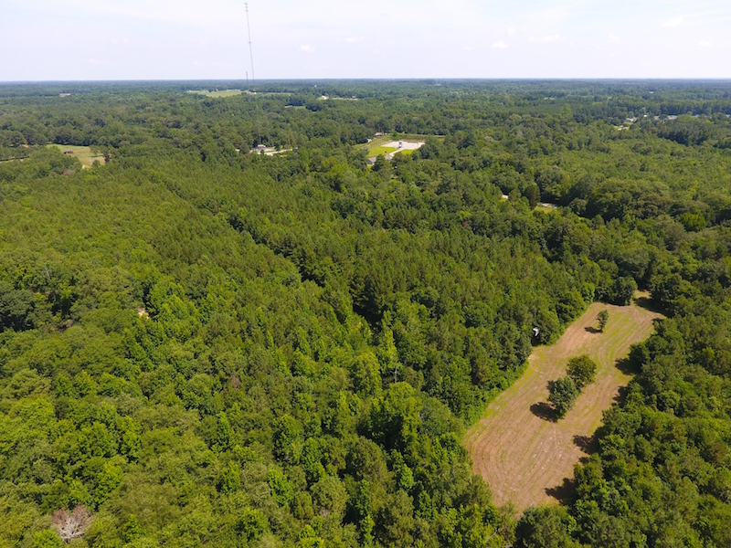 Under Contract 49 Acres Of Hunting And Timber Land For