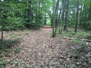 SOLD!  5 Acres of Residential Land For Sale in Prince George County VA!