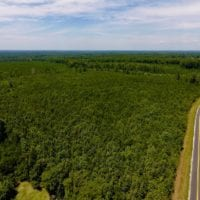 SOLD!  24.7 Acres of Timber and Hunting Land For Sale in Franklin County NC!
