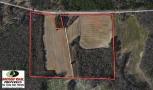 SOLD!  21.53 Acres of Farm and Timber Land For Sale in Nash County NC!