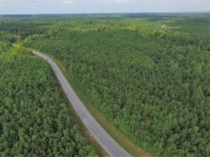 UNDER CONTRACT!  33.75 Acres of Hunting and Recreational Land For Sale in Brunswick County VA!