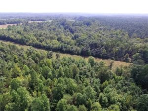 UNDER CONTRACT!  17 Acres of Hunting and Recreational Land For Sale in Lunenburg County VA!