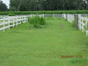 UNDER CONTRACT!  541.7 Acres of Farm and Hunting Land with Home For Sale in Columbus County NC!