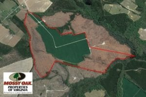UNDER CONTRACT!  165 Acres of Farm and Hunting Land For Sale in Suffolk VA!