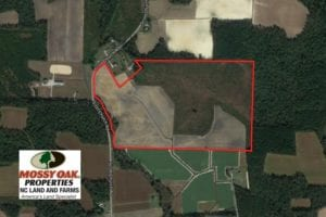 SOLD!  92.6 Acres of Farm and Timber Land For Sale in Wilson County NC!