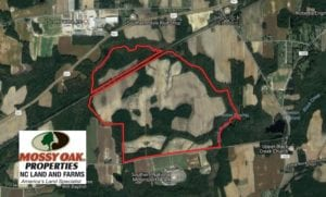 SOLD!  347.8 Acres of Farm and Timber Land For Sale in Wilson County NC!