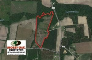 SOLD!  24.79 Acres of Hunting Land with Residential Site for Sale in Columbus County NC!