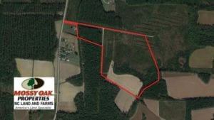 SOLD!  57.3 Acres of Timber and Farm Land For Sale in Wilson County NC!