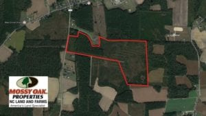 SOLD!  86.59 Acres of Timber and Hunting Land For Sale in Wilson County NC!