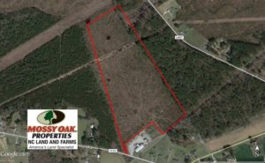 SOLD!  37.5 Acres of Hunting Land For Sale in Hertford County NC!