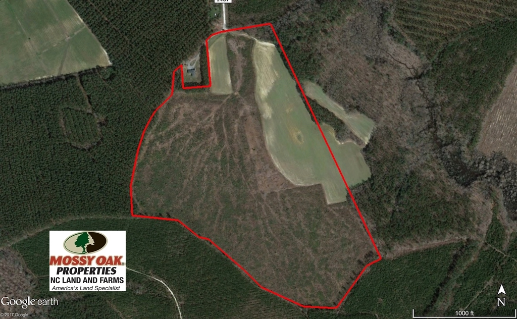 SOLD!  90.5 Acres of Farm and Hunting Land For Sale in Hertford County NC!