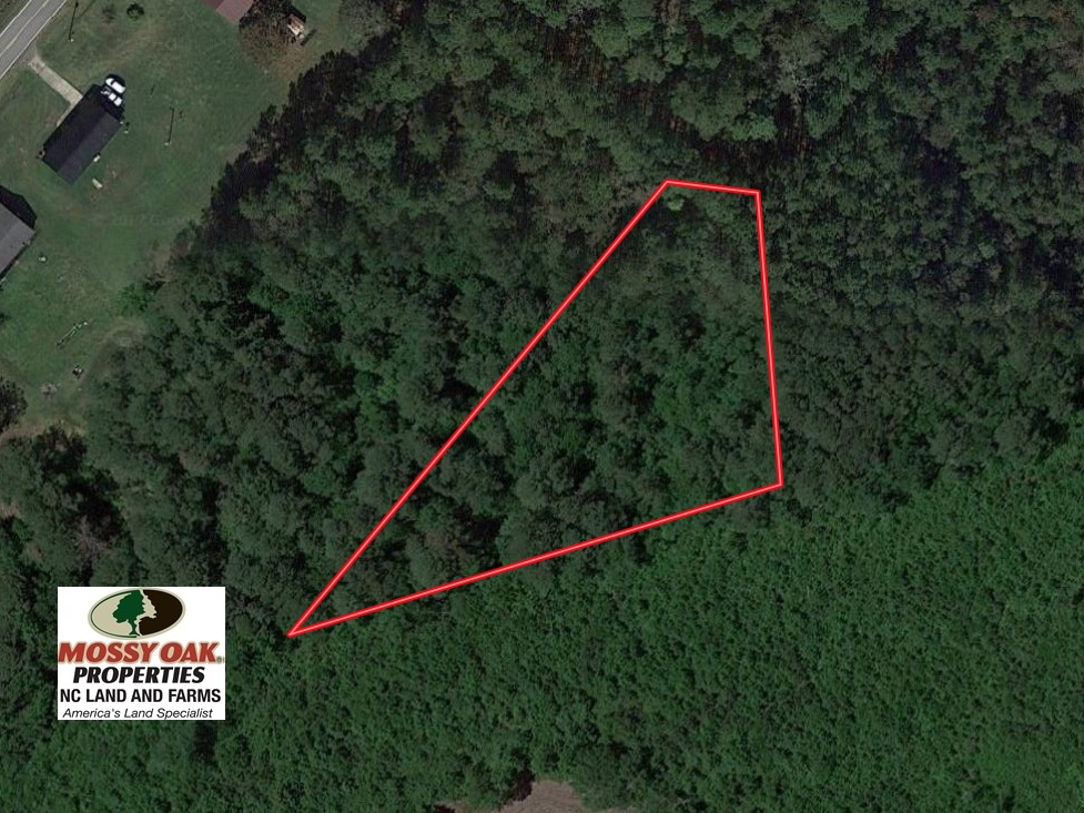 SOLD!  1 +/- Acres of Recreational Land for Sale in Robeson County NC!