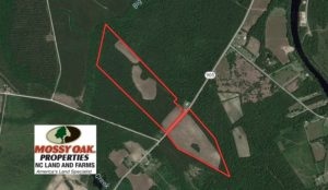 SOLD!  61.19 Acres of Farm and Timber Land For Sale in Columbus County NC!