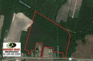 SOLD!  49.46 Acres of Hunting and Timber Land for Sale in Columbus County NC!