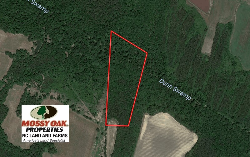 SOLD!  13.23 Acres of Hunting and Timber Land for Sale in Columbus County NC!