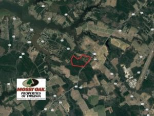 UNDER CONTRACT!  103 Acres of Hunting and Timber Land for Sale in Accomack County VA!